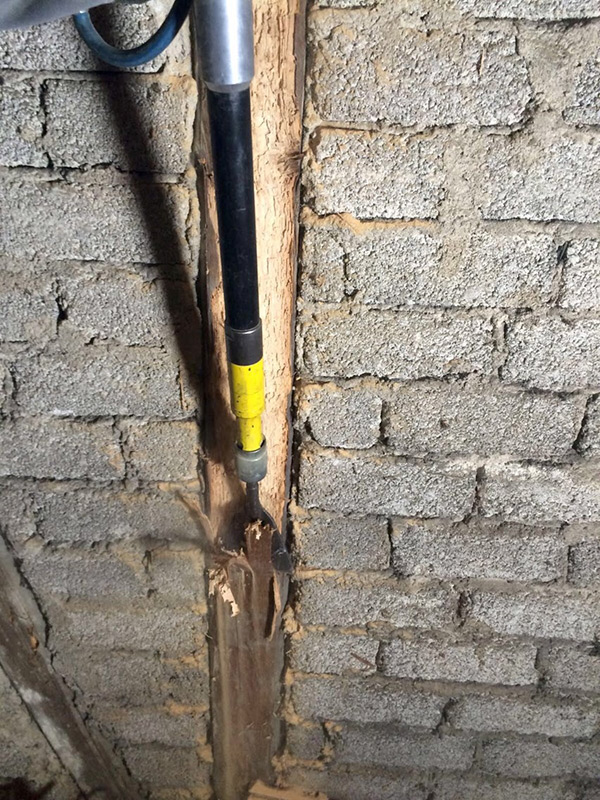 Holzschutz Dachstuhlsanierung Und Schadlingsbekampfung In Koblenz